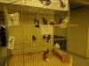 wystawa-2008-006