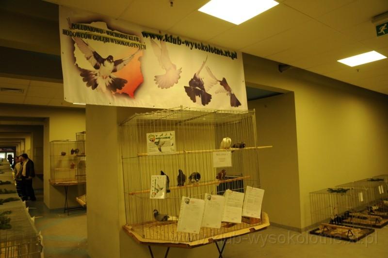 wystawa-2008-078