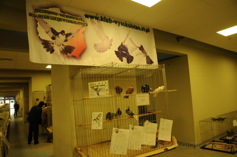 wystawa-2008-146